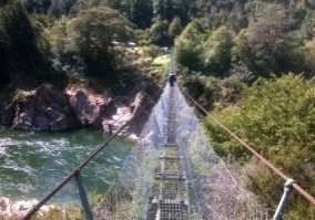 buller-gorge-swingbridge